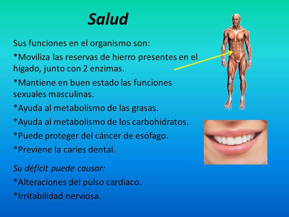 Salud Sus funciones en el organismo son: *Moviliza las reservas de hierro presentes en el hígado, junto con 2 enzimas. *Mantiene en buen estado las fu