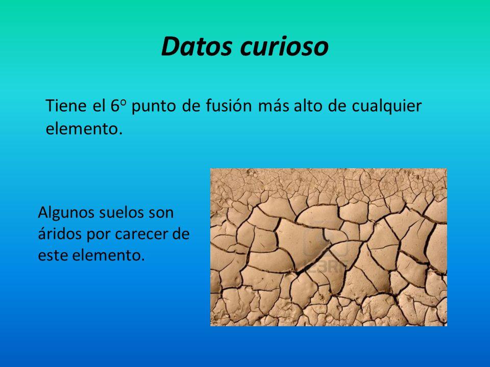 Datos curioso Tiene el 6 o punto de fusión más alto de cualquier elemento. Algunos suelos son áridos por carecer de este elemento.
