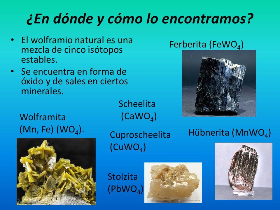 El wolframio natural es una mezcla de cinco isótopos estables. Se encuentra en forma de óxido y de sales en ciertos minerales. ¿En dónde y cómo lo enc