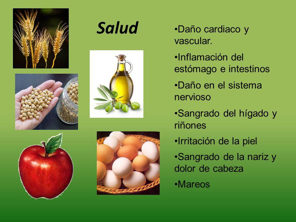 Salud Daño cardiaco y vascular. Inflamación del estómago e intestinos Daño en el sistema nervioso Sangrado del hígado y riñones Irritación de la piel