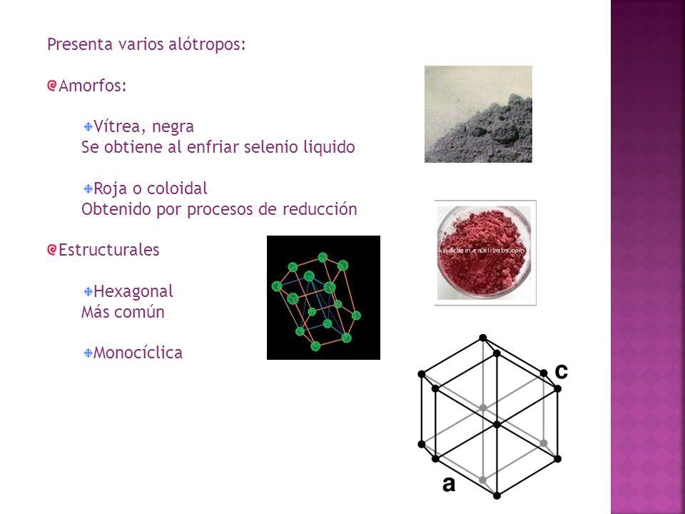 Presenta varios alótropos: Amorfos: Vítrea, negra Se obtiene al enfriar selenio liquido Roja o coloidal Obtenido por procesos de reducción Estructural