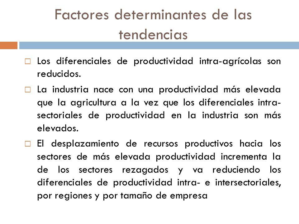 Factores determinantes de las tendencias Los diferenciales de productividad intra-agrícolas son reducidos. La industria nace con una productividad más