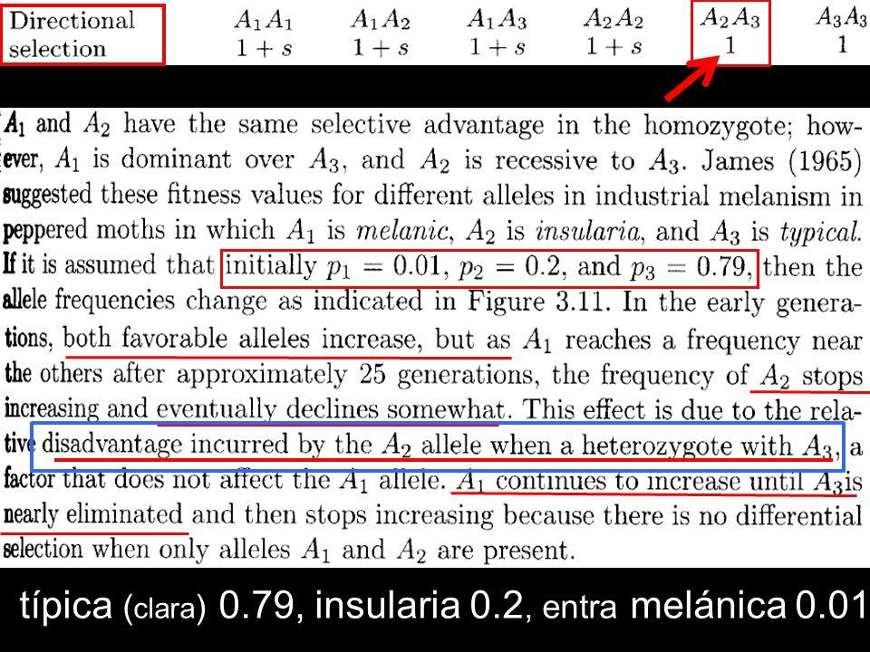 típica ( clara ) 0.79, insularia 0.2, entra melánica 0.01