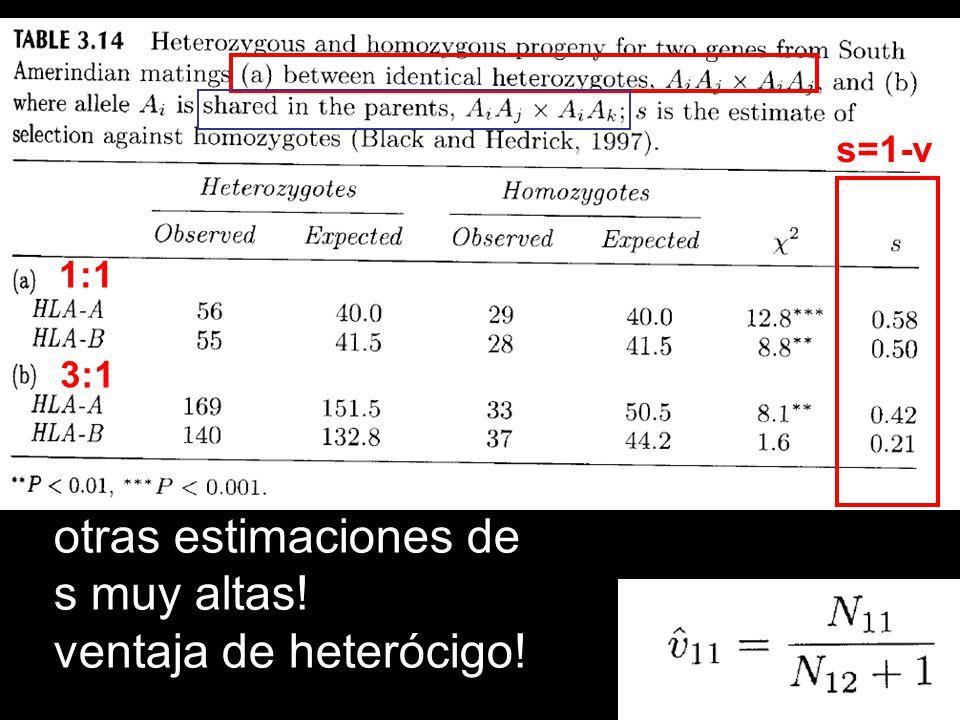 1:1 3:1 s=1-v otras estimaciones de s muy altas! ventaja de heterócigo!