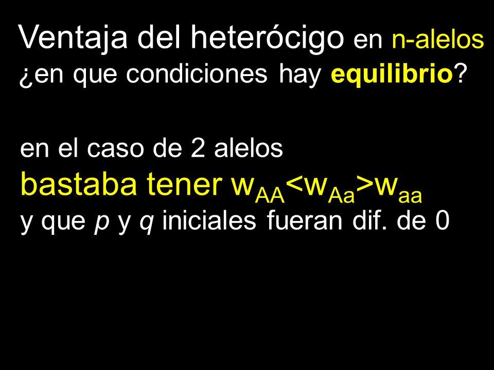 Ventaja del heterócigo en n-alelos ¿en que condiciones hay equilibrio? en el caso de 2 alelos bastaba tener w AA w aa y que p y q iniciales fueran dif