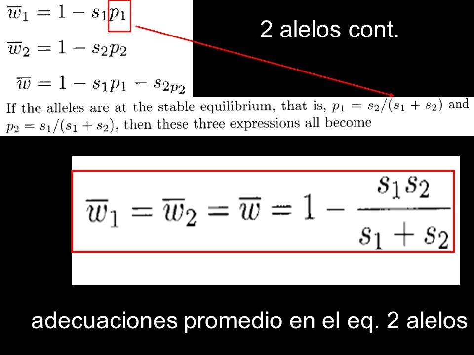 2 alelos cont. adecuaciones promedio en el eq. 2 alelos