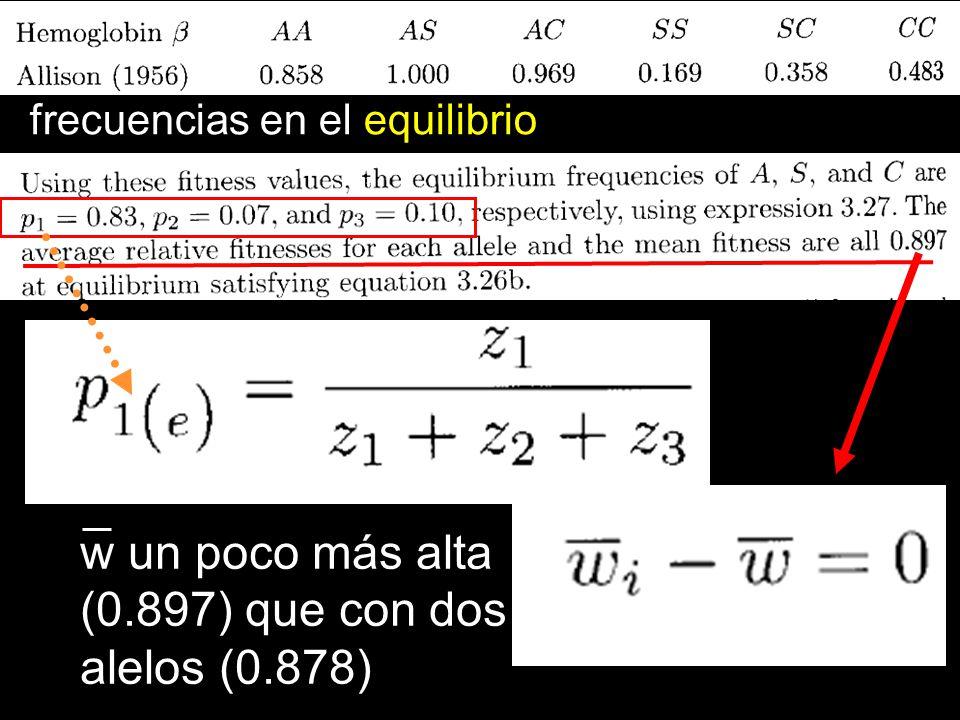frecuencias en el equilibrio w un poco más alta (0.897) que con dos alelos (0.878)