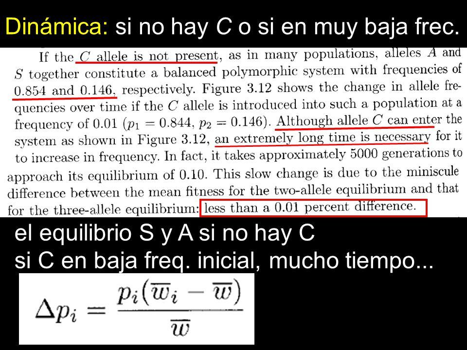 Dinámica: si no hay C o si en muy baja frec. el equilibrio S y A si no hay C si C en baja freq. inicial, mucho tiempo...