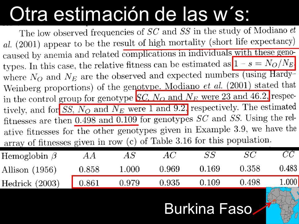 Otra estimación de las w´s: Burkina Faso
