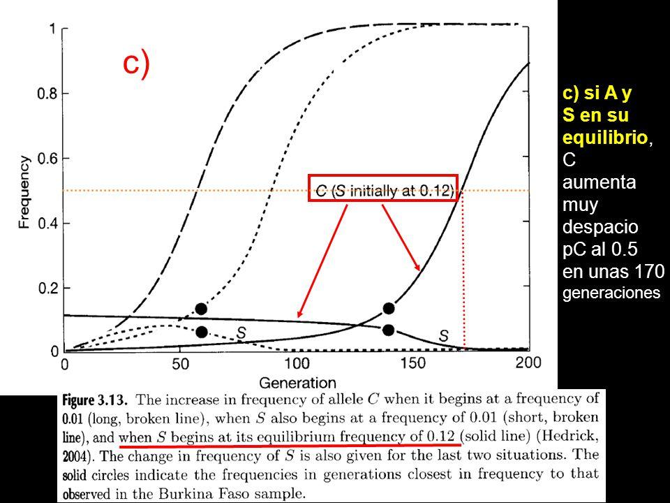 c) si A y S en su equilibrio, C aumenta muy despacio pC al 0.5 en unas 170 generaciones c)