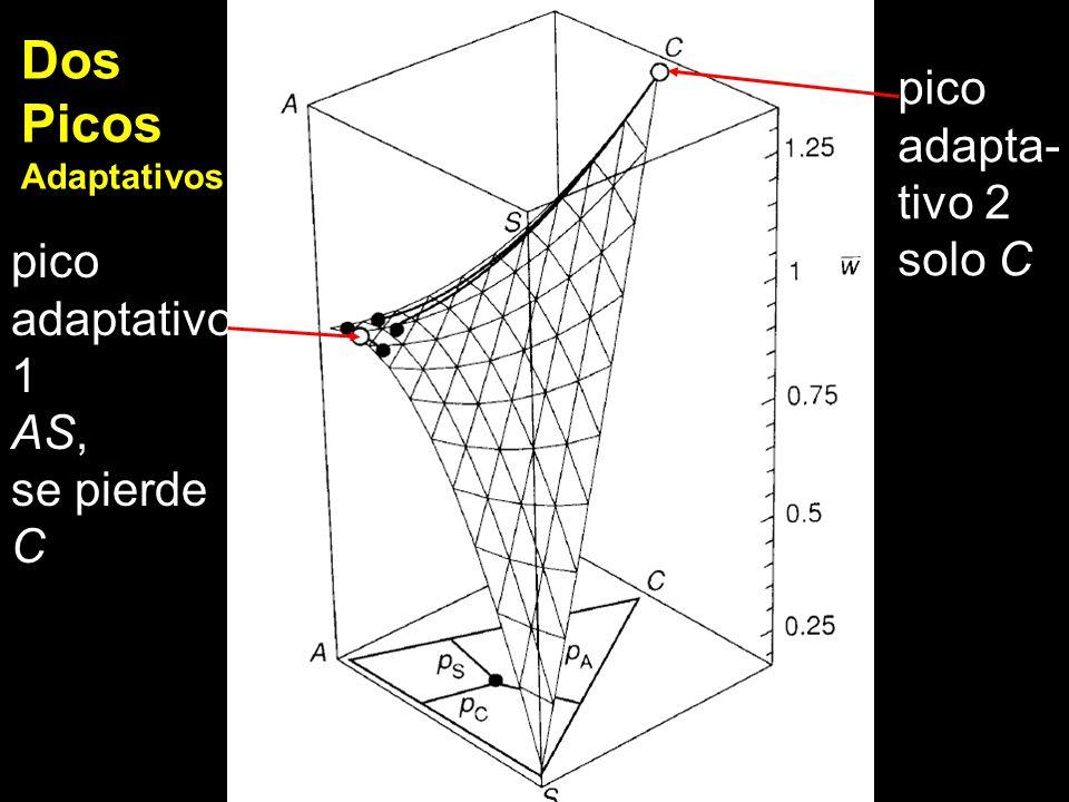 pico adapta- tivo 2 solo C pico adaptativo 1 AS, se pierde C Dos Picos Adaptativos