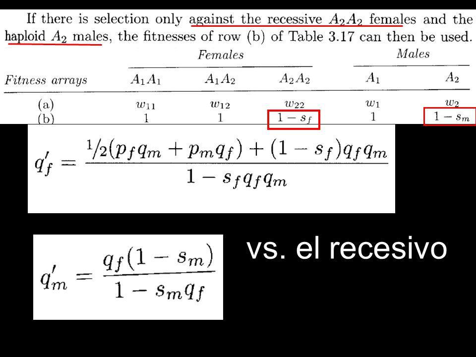 vs. el recesivo