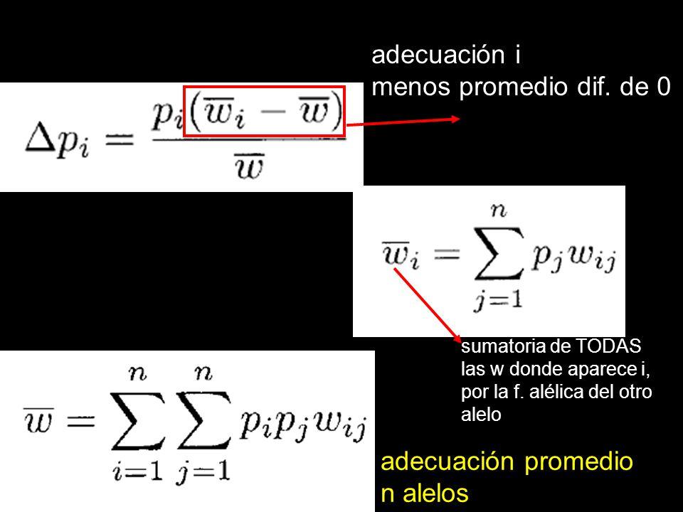 adecuación i menos promedio dif. de 0 sumatoria de TODAS las w donde aparece i, por la f. alélica del otro alelo adecuación promedio n alelos