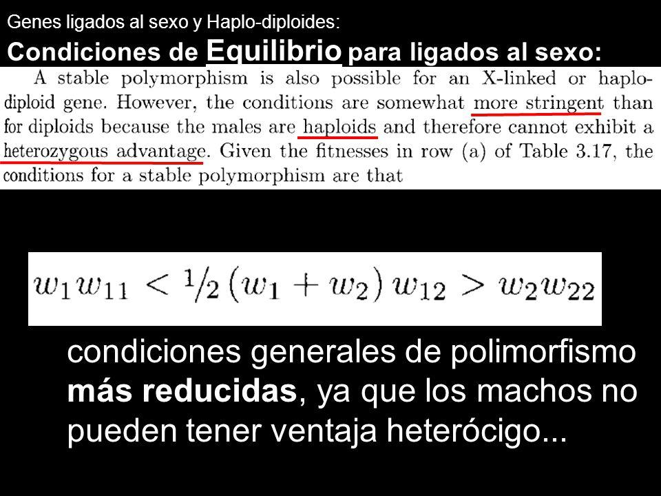 Genes ligados al sexo y Haplo-diploides: Condiciones de Equilibrio para ligados al sexo: condiciones generales de polimorfismo más reducidas, ya que l