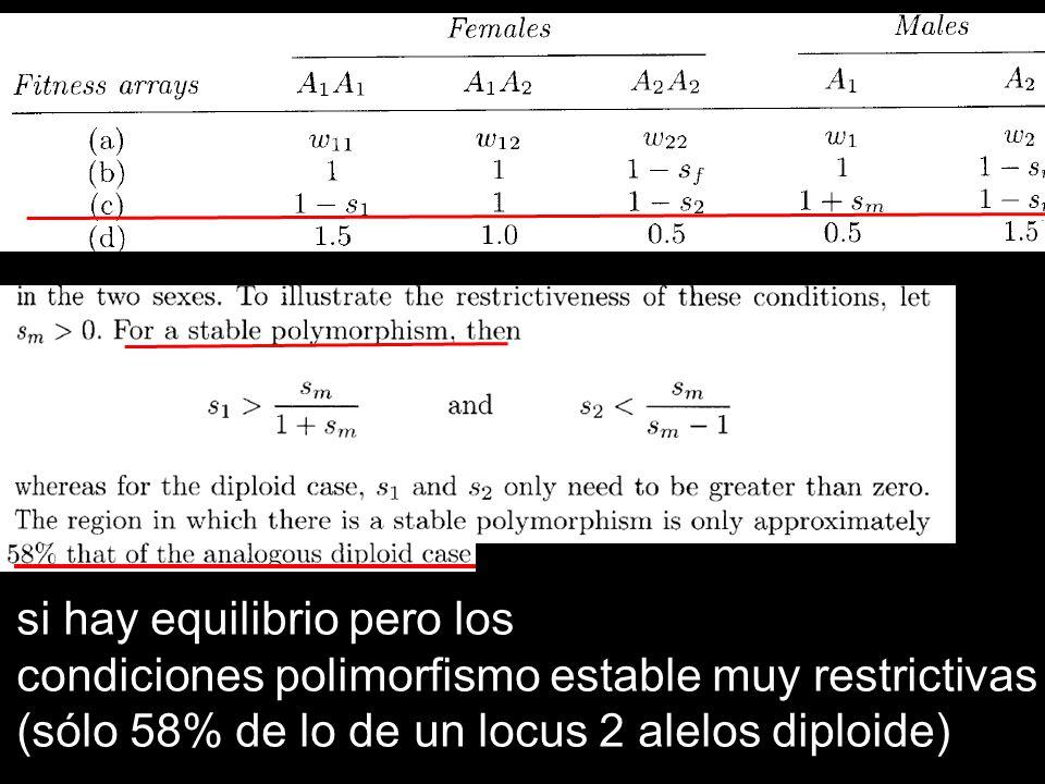 si hay equilibrio pero los condiciones polimorfismo estable muy restrictivas (sólo 58% de lo de un locus 2 alelos diploide)