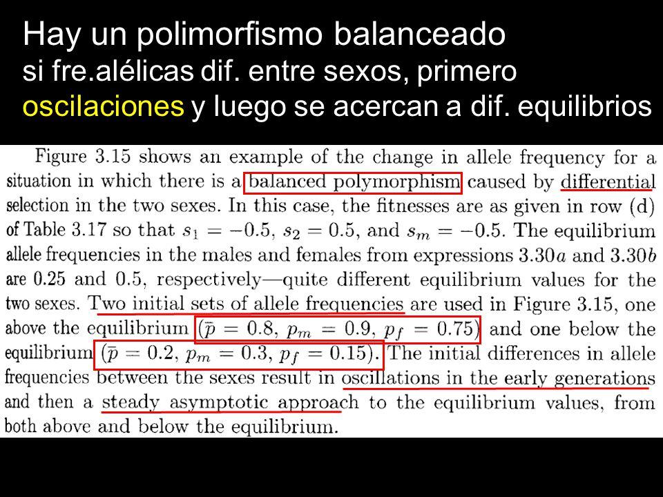 Hay un polimorfismo balanceado si fre.alélicas dif. entre sexos, primero oscilaciones y luego se acercan a dif. equilibrios