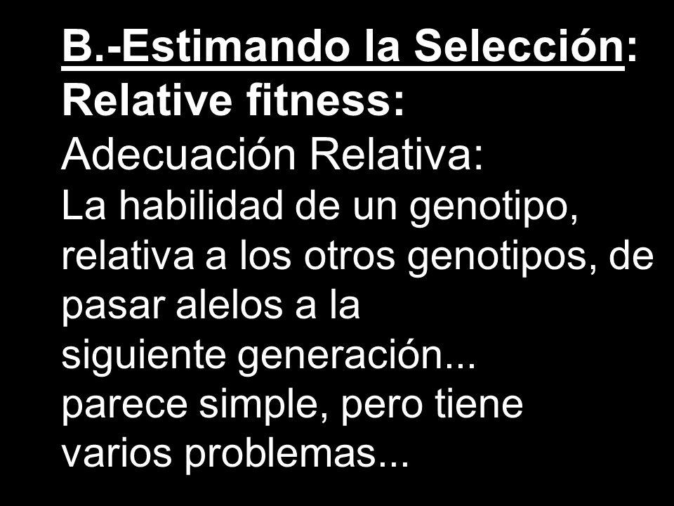 B.-Estimando la Selección: Relative fitness: Adecuación Relativa: La habilidad de un genotipo, relativa a los otros genotipos, de pasar alelos a la si