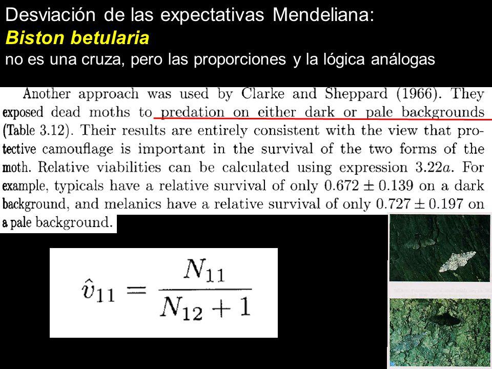 Desviación de las expectativas Mendeliana: Biston betularia no es una cruza, pero las proporciones y la lógica análogas