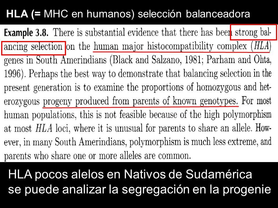 HLA (= MHC en humanos) selección balanceadora HLA pocos alelos en Nativos de Sudamérica se puede analizar la segregación en la progenie