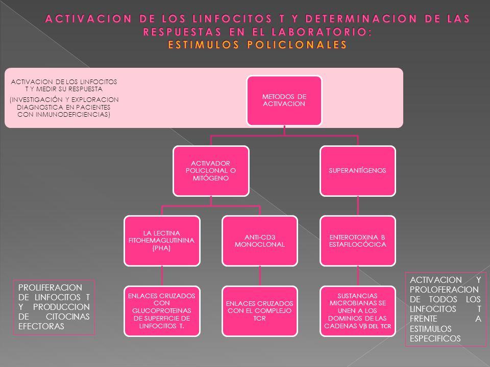 ACTIVACION DE LOS LINFOCITOS T Y MEDIR SU RESPUESTA (INVESTIGACIÓN Y EXPLORACION DIAGNOSTICA EN PACIENTES CON INMUNODEFICIENCIAS) METODOS DE ACTIVACIO