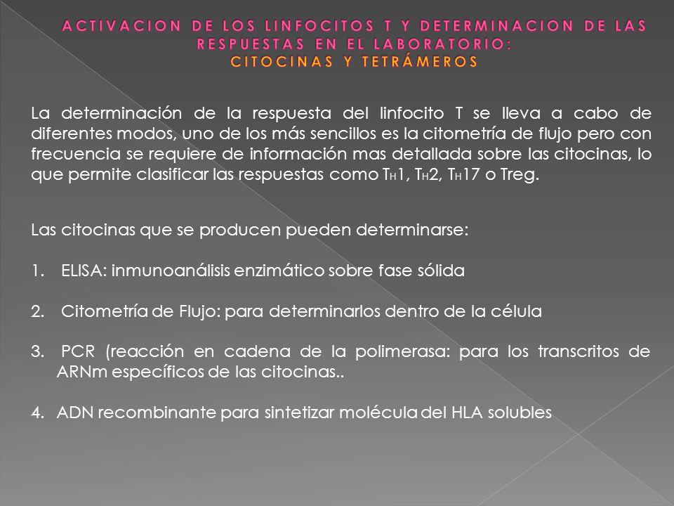 La determinación de la respuesta del linfocito T se lleva a cabo de diferentes modos, uno de los más sencillos es la citometría de flujo pero con frec