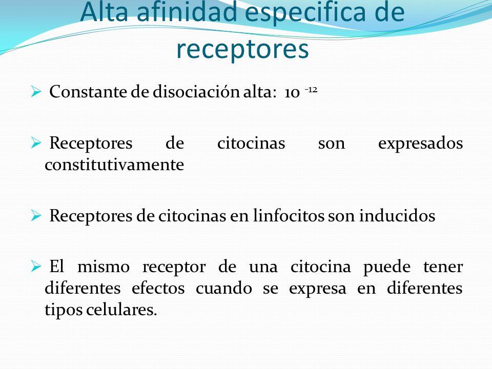 Alta afinidad especifica de receptores Constante de disociación alta: 10 -12 Receptores de citocinas son expresados constitutivamente Receptores de ci