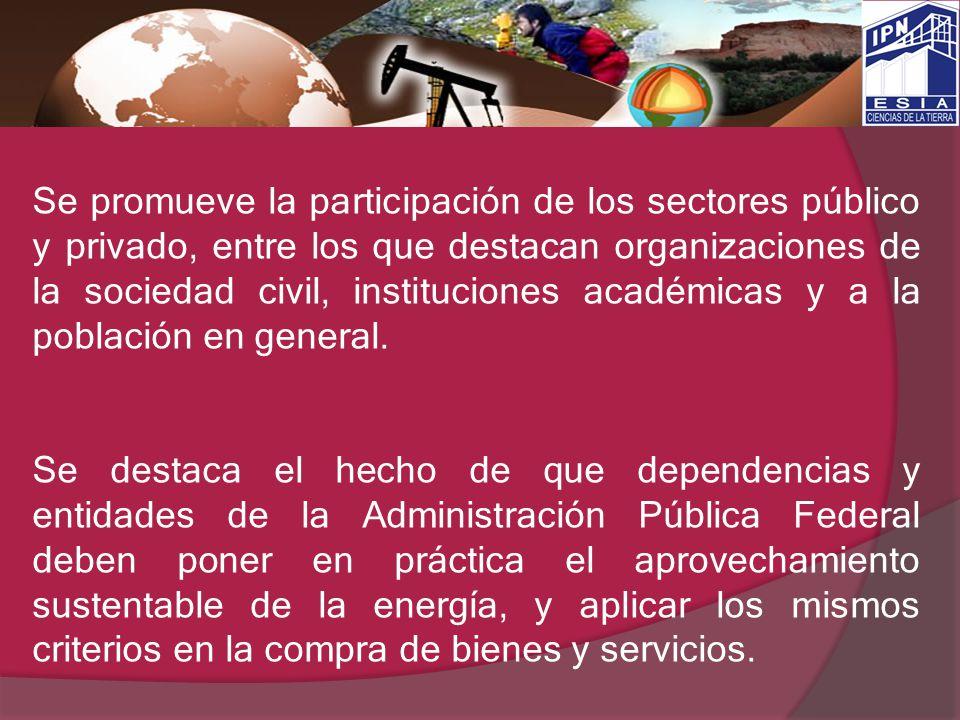 Se promueve la participación de los sectores público y privado, entre los que destacan organizaciones de la sociedad civil, instituciones académicas y