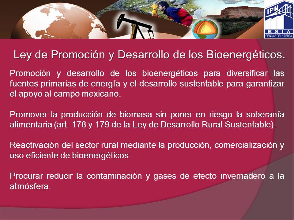 Ley de Promoción y Desarrollo de los Bioenergéticos. Promoción y desarrollo de los bioenergéticos para diversificar las fuentes primarias de energía y