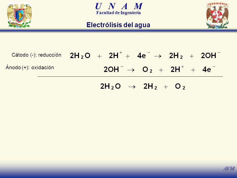 U N A M Facultad de Ingeniería AVM Cátodo (-): reducción Electrólisis del agua Ánodo (+): oxidación