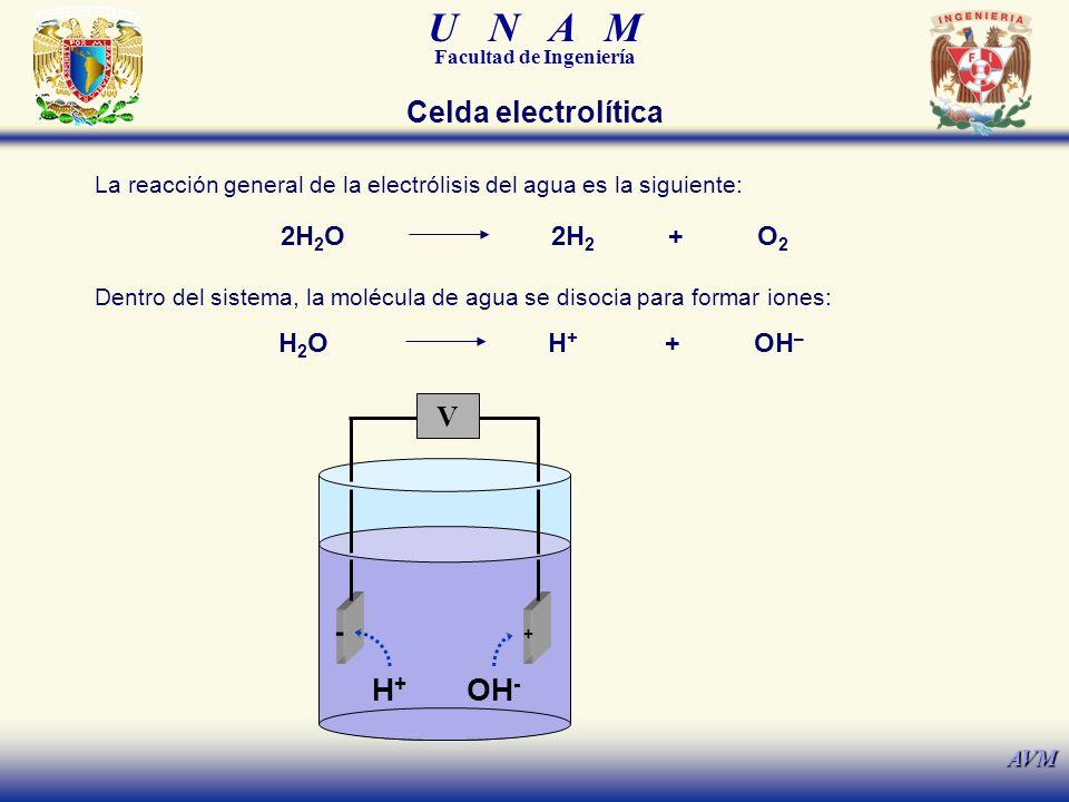 U N A M Facultad de Ingeniería AVM La reacción general de la electrólisis del agua es la siguiente: 2H 2 O2H 2 +O2O2 Dentro del sistema, la molécula de agua se disocia para formar iones: H2OH2OH+H+ +OH – H+H+ OH - V + - Celda electrolítica