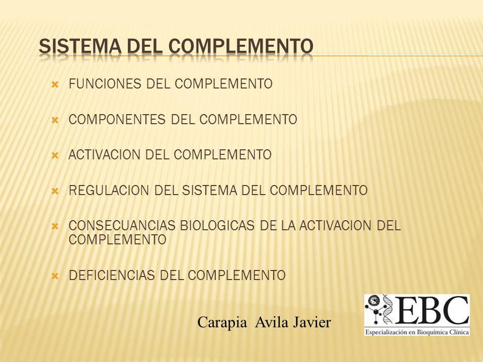 FUNCIONES DEL COMPLEMENTO COMPONENTES DEL COMPLEMENTO ACTIVACION DEL COMPLEMENTO REGULACION DEL SISTEMA DEL COMPLEMENTO CONSECUANCIAS BIOLOGICAS DE LA