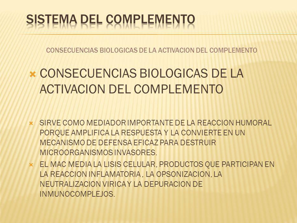 CONSECUENCIAS BIOLOGICAS DE LA ACTIVACION DEL COMPLEMENTO SIRVE COMO MEDIADOR IMPORTANTE DE LA REACCION HUMORAL PORQUE AMPLIFICA LA RESPUESTA Y LA CON
