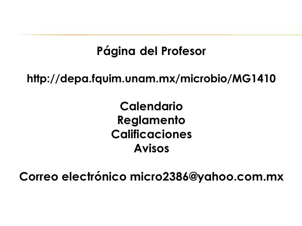 Página del Profesor http://depa.fquim.unam.mx/microbio/MG1410 Calendario Reglamento Calificaciones Avisos Correo electrónico micro2386@yahoo.com.mx