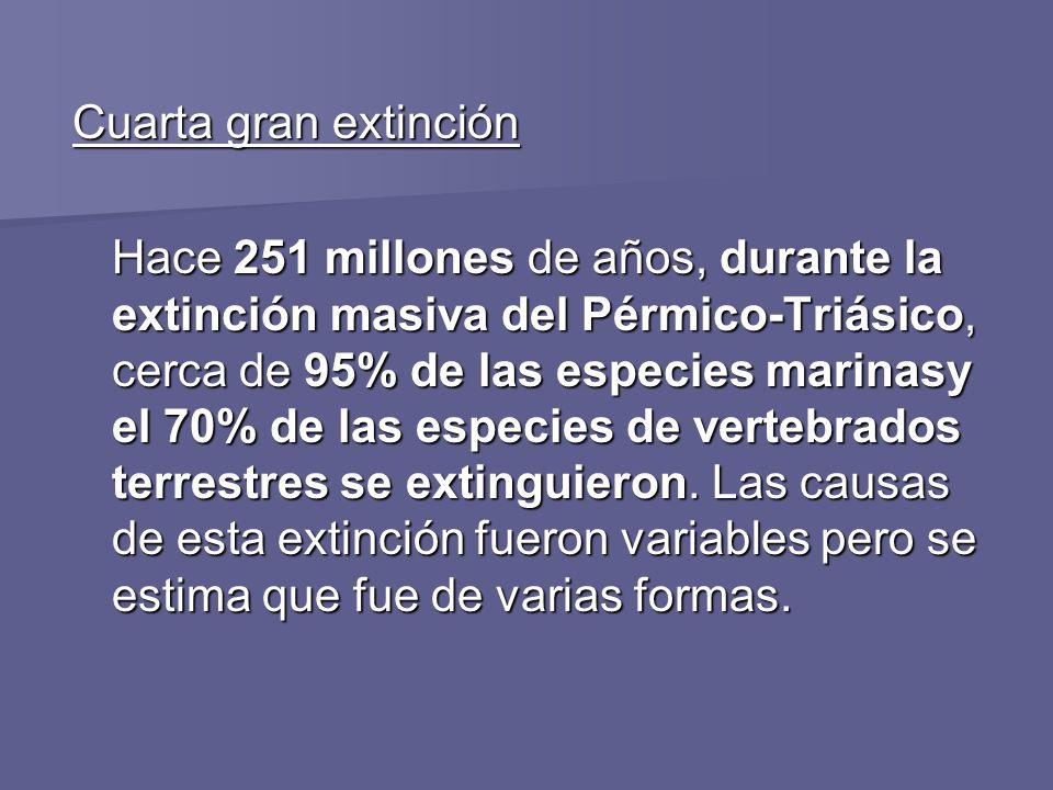 Cuarta gran extinción Hace 251 millones de años, durante la extinción masiva del Pérmico-Triásico, cerca de 95% de las especies marinasy el 70% de las