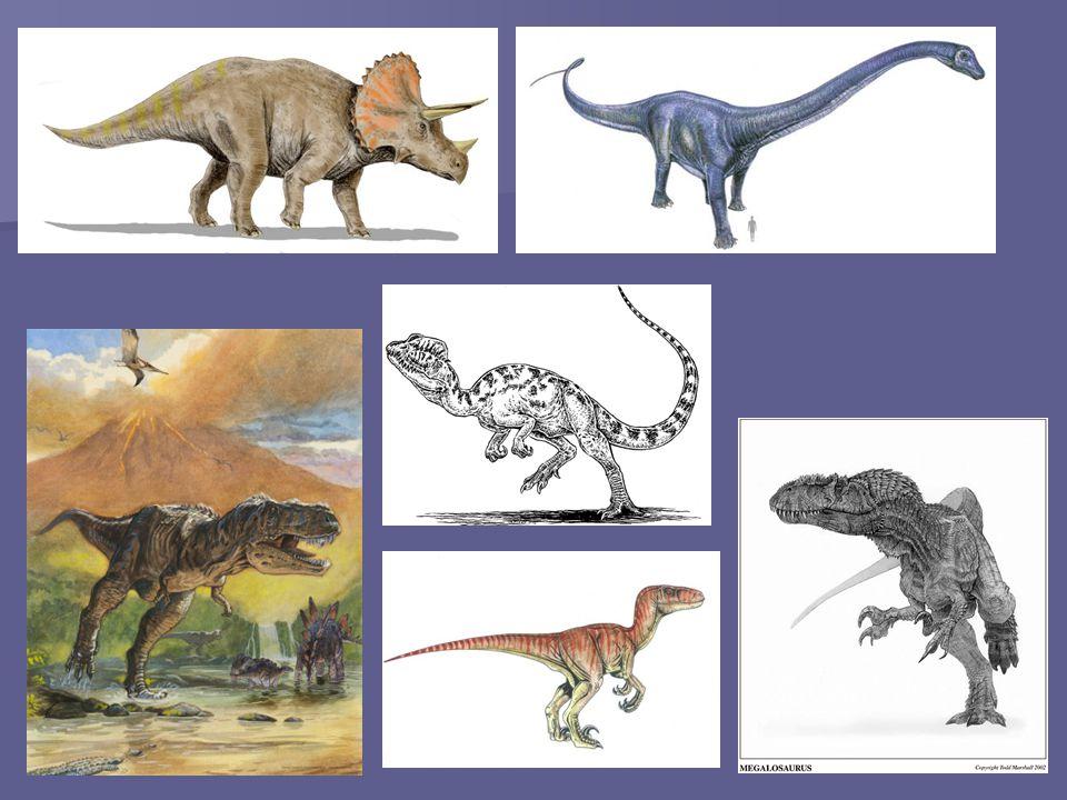 Séptima extinción: La Extinción masiva del Holoceno fue la extinción de especies que ocurre en el último período geológico, el Holoceno.