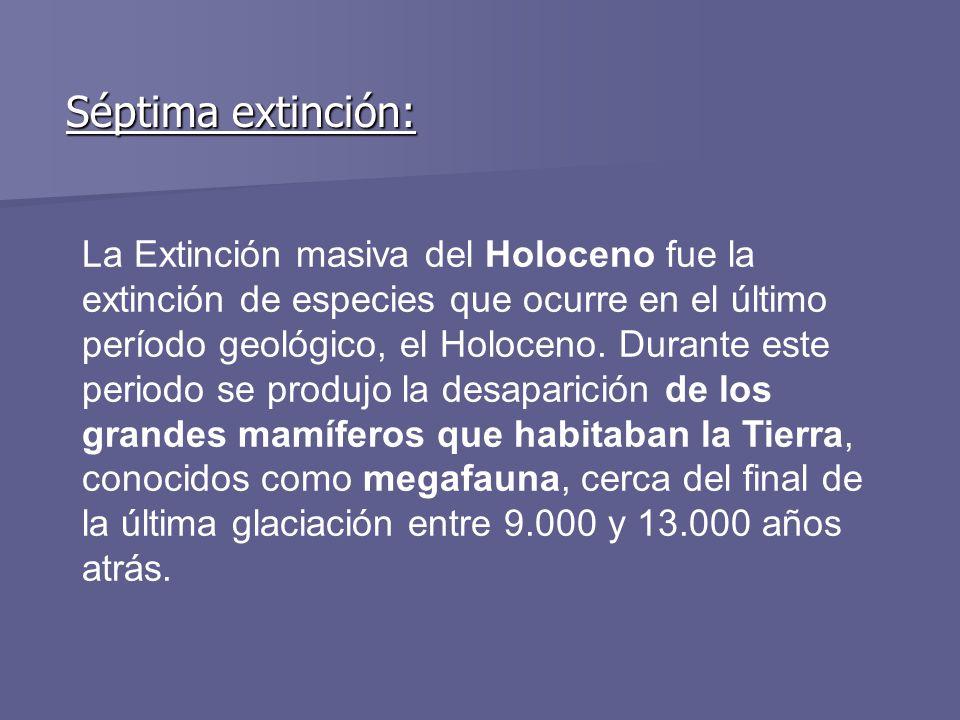 Séptima extinción: La Extinción masiva del Holoceno fue la extinción de especies que ocurre en el último período geológico, el Holoceno. Durante este