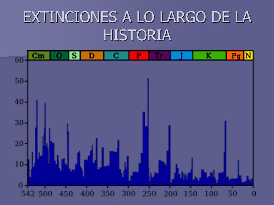 EXTINCIONES A LO LARGO DE LA HISTORIA