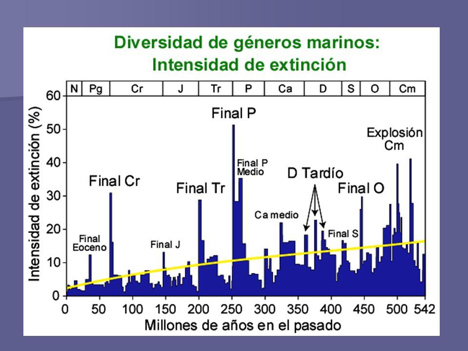 Primera gran extinción: Esta extinción se dio en el comienzo de la era Paleozoica, entre los periodos Cámbrico y Ordovícico.