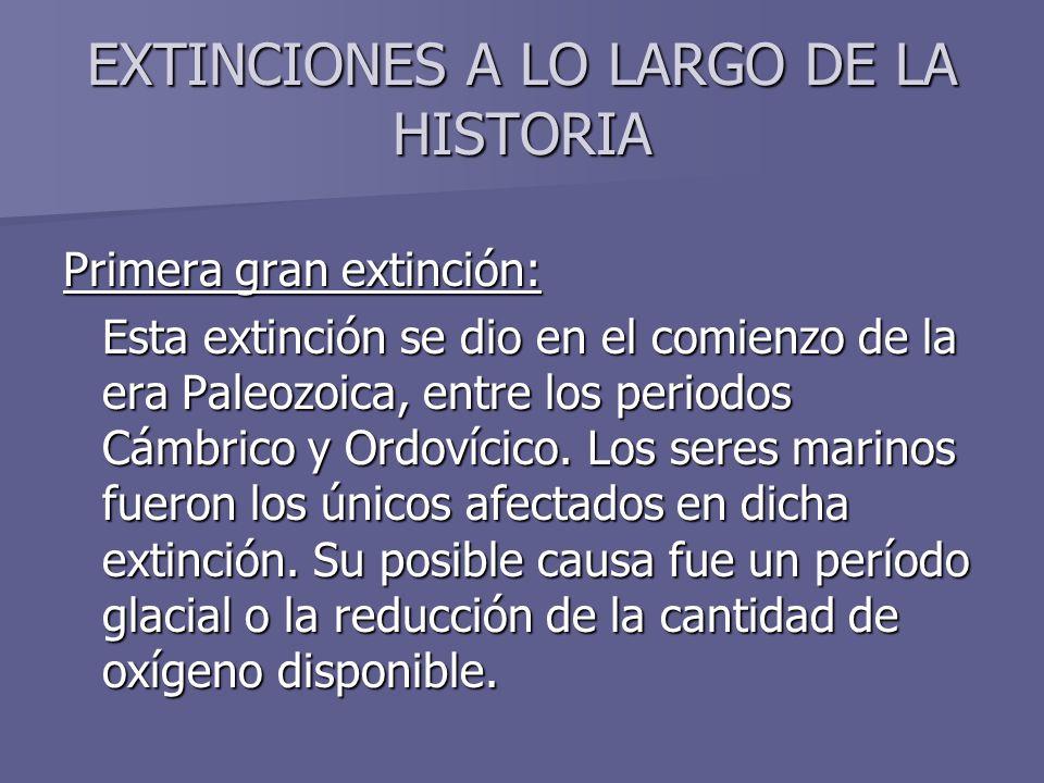 Primera gran extinción: Esta extinción se dio en el comienzo de la era Paleozoica, entre los periodos Cámbrico y Ordovícico. Los seres marinos fueron