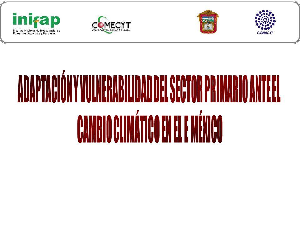 Grupo de trabajo: Dr.Erasto Sotelo Ruiz M.C.