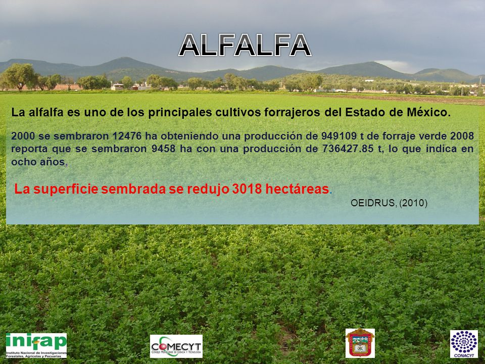 Aptitud del terreno actual para cultivo de Alfalfa Clasificación Superficie en hectáreas Optima24,227 Sub-óptima154,280 No apta2,065,992