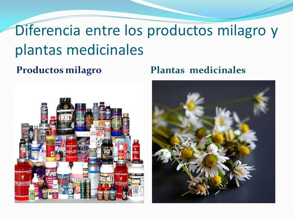 Diferencia entre los productos milagro y plantas medicinales Productos milagro Plantas medicinales
