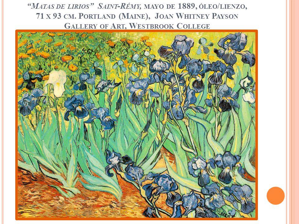 M ATAS DE LIRIOS S AINT -R ÉMY, MAYO DE 1889, ÓLEO / LIENZO, 71 X 93 CM. P ORTLAND (M AINE ), J OAN W HITNEY P AYSON G ALLERY OF A RT, W ESTBROOK C OL