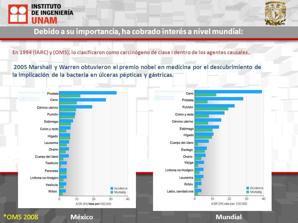 Helicobacter pylori será proporcionada por la Facultad de Medicina (UNAM.