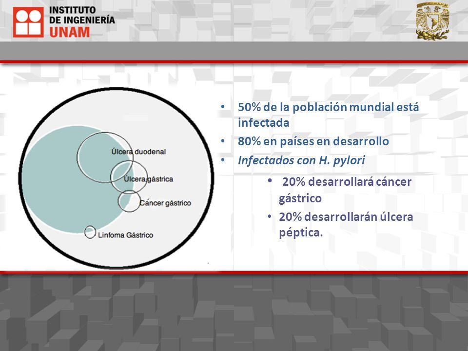 50% de la población mundial está infectada 80% en países en desarrollo Infectados con H. pylori 20% desarrollará cáncer gástrico 20% desarrollarán úlc