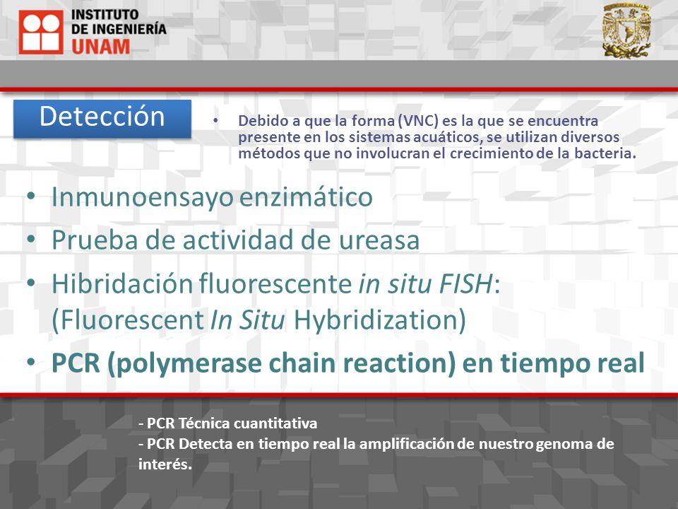Se ha detectado HELICOBACTER PYLORI en: Agua superficial (Cutzamala).
