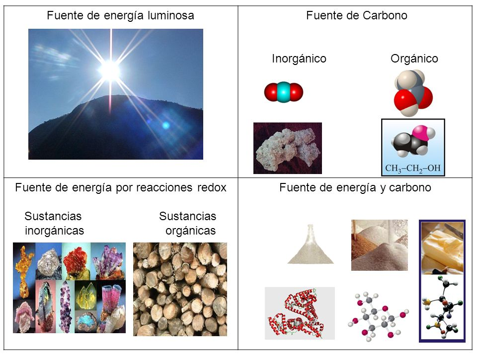 Fuente de energía luminosa Fuente de Carbono Inorgánico Orgánico Fuente de energía por reacciones redox Sustancias inorgánicas orgánicas Fuente de ene