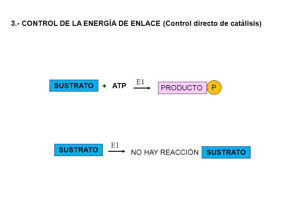 3.- CONTROL DE LA ENERGÍA DE ENLACE (Control directo de catálisis) SUSTRATO E1 PRODUCTO P NO HAY REACCIÓN E1 + ATP SUSTRATO