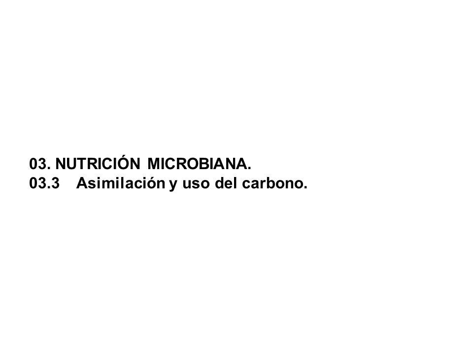 03. NUTRICIÓN MICROBIANA. 03.3Asimilación y uso del carbono.
