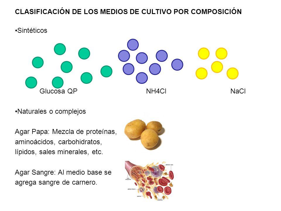 CLASIFICACIÓN DE LOS MEDIOS DE CULTIVO POR COMPOSICIÓN Sintéticos Glucosa QPNH4ClNaCl Naturales o complejos Agar Papa: Mezcla de proteínas, aminoácido